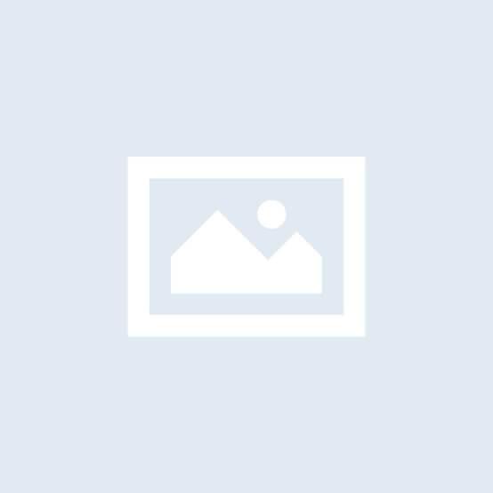 D 4 - Firola Games